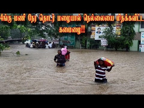 Nellai is floating due to heavy rainfall|Tamil News|