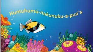 Humuhumu-nukunuku-a-pua'a  (Humu Song)