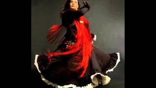 Flamenco belly dance fusion music