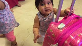 Twins Bella and Vienna think their new luggage is a walker. :)