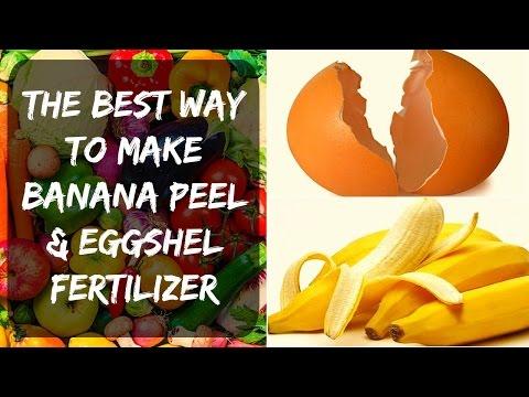 Eggshell Fertilizer + Banana Peel - Potassium & Calcium for Tomatoes & Peppers in Your Garden