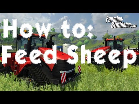 Farming Simulator 2013 How to: Feed Sheep Cheap