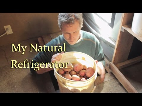 Natural Refrigerator: The Root Cellar in My Floor