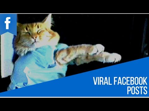 How to Create Viral Facebook Posts - Simple Trick Anyone Can Do