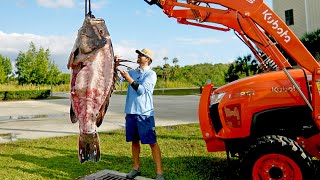 How to Clean and Cook a 300lb Grouper