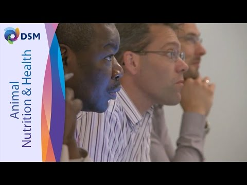 DSM & Novozymes: Global Feed Protease Dialogue 2013