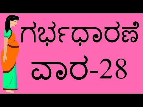Pregnancy  Kannada   week by week   Week 28   ಗರ್ಭಧಾರಣೆಯ ವಾರ 28