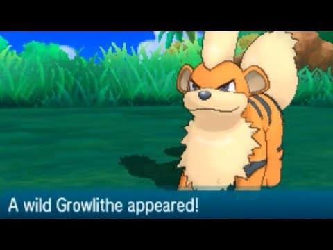 Pokemon Sun & Moon - How to Catch GROWLITHE (Route 2)