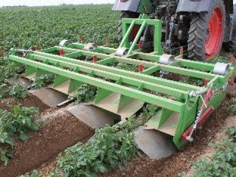 Baselier GKB Potato Weeding and Ridge Consolidation