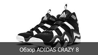 online store 7acae 29964 YOUNGGUN Обзор кроссовок adidas Crazy 8