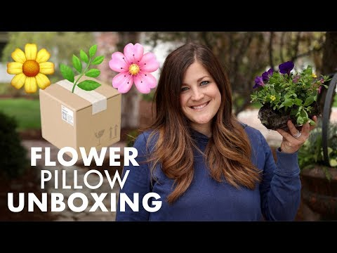 Flower Pillow Unboxing 🌼🌿🌸 // Garden Answer