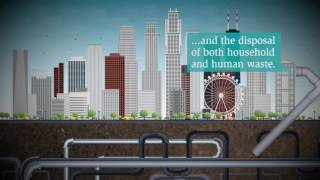 Download What is sanitation? Video
