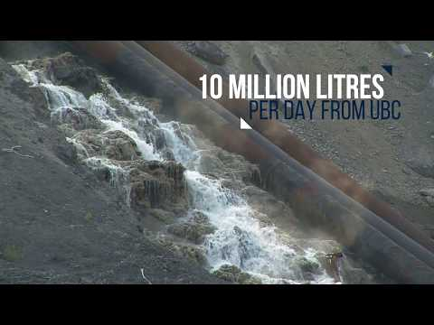 Prevent Wastewater Pollution at UBC