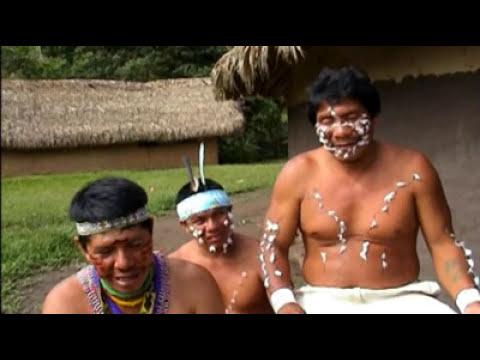 Ray Mears' Bushcraft S01E02 - Jungle Camp