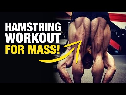 Hamstring Workout: Best Hamstring Exercises For Mass (Weak Point Training Ep. 2)