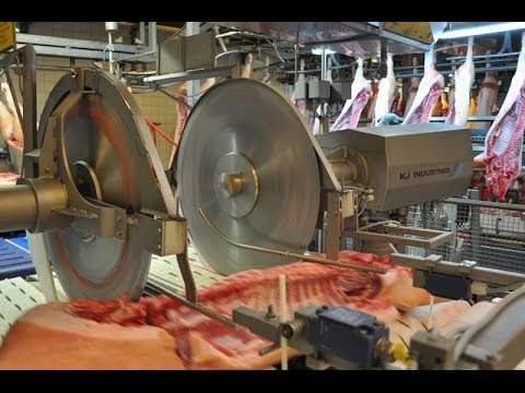 Primal Cutting Pork