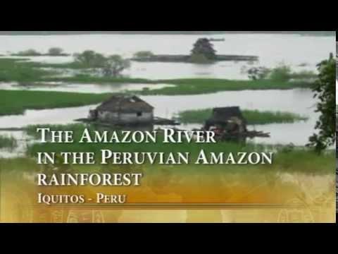 The Amazon River in the Peruvian Amazon rainforest -  Iquitos Peru