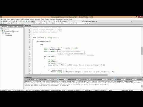 C++ Feet and Inches to Centimeter Converter with Exception Handling