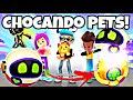 PKXD ADOTANDO PETS DA NOVA ATUALIZAÇÃO PETER GAMES PETER TOYS