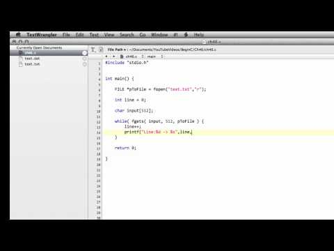Beginning C Programming - Part 46 - Read Text From A File