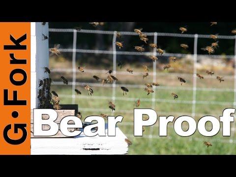 Bearproof A Beehive - Beekeeping 101 - GardenFork