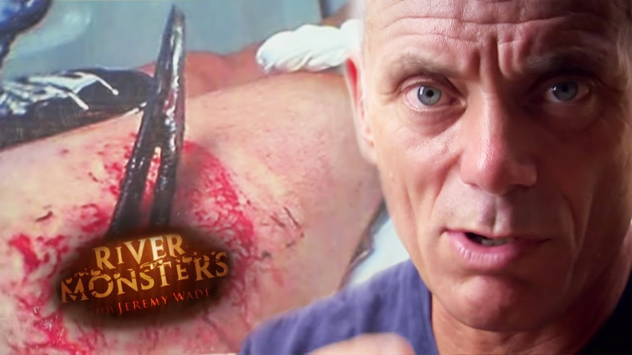 How Dangerous Is A Stingray? | STINGRAY | River Monsters