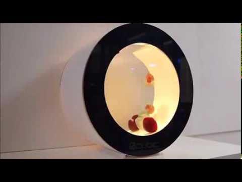 Cubic Orbit 20 Desktop Jellyfish Tank - Pet Jellyfish