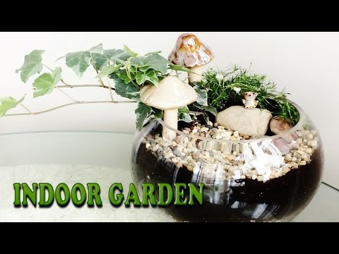 DIY FAIRY GARDEN! Customize your own! EASY! Fairy Garden Room Decor OR Gift!