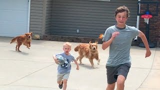 Drive by Dunk Challenge (Chased by dogs)   That