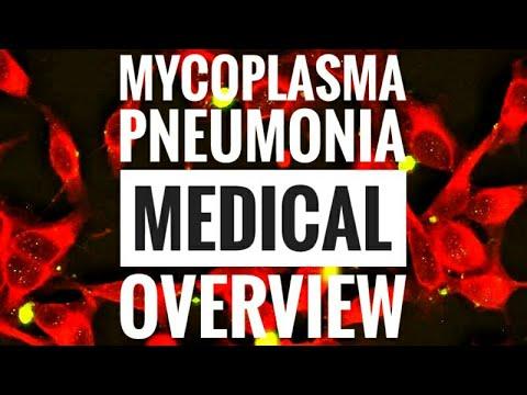 Mycoplasma pneumoniae (Walking Pneumonia)