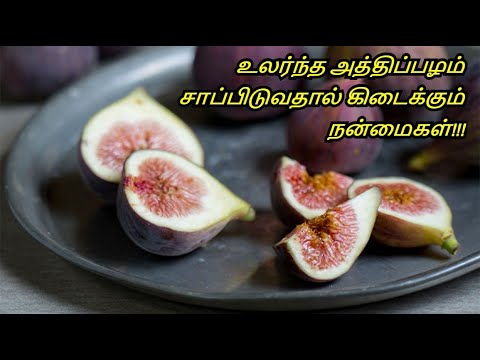 Amazing Benefits of Fig Furit in Tamil - Athipazham Payangal - Health benefits of Athipazham.