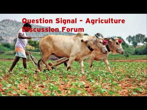 Best Agriculture Discussion Forum Website - Question Signal