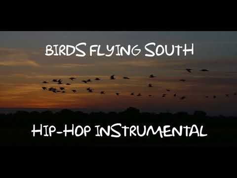 Birds Flying South Hip Hop Instrumental