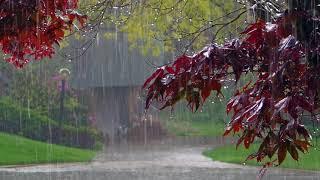 Download Дождь, гром, гроза Расслабляющие звуки природы Усыпляющие звуки летнего дождя Video