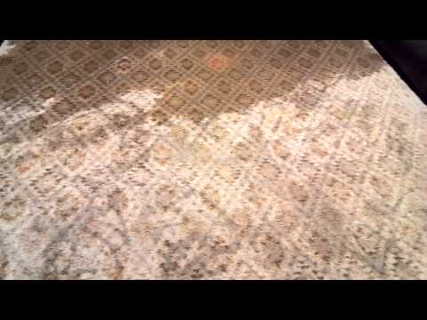 Rochester NY Oriental Rug Cleaning & Odor Removal