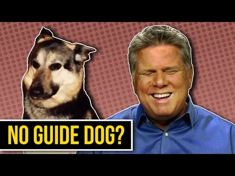 Why I Don't Have A Guide Dog