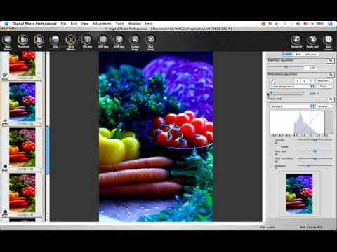 Canon Digital Photo Professional Tutorial - Tool palette/RAW image (8/19)