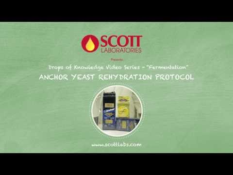 Scott Laboratories - Rehydration Protocol for Anchor Yeast