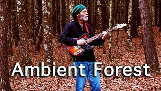 Ambient Guitar Meditation 17-6 Your Head is a Living Forest (Fender Baritone Guitar)