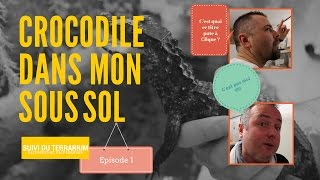 J&'ai Des Crocodiles Dans Mon Sous Sol (1/2)