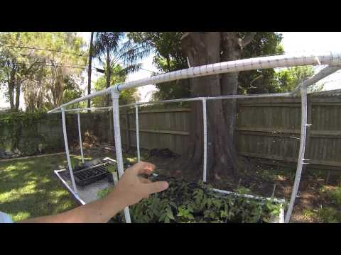 Redneck Garden Table improved with Squirrel and Bird Proof Netting Cage!