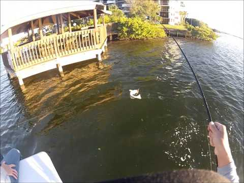 Banana River Winter Dock Fishing