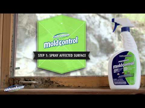 Concrobium Mold Control:  Indoor Mold Fighting Guide