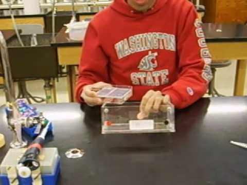 How to load a gel