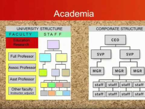 The Faculty and Staff Relationship: Working Effectively for Success