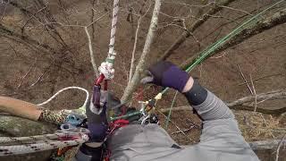 Rope Wrench & Recreational Tree Climbing in Ohio - PakVim
