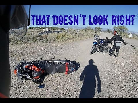 Offroading on Triumph Tiger.  How Hard Can It Be?