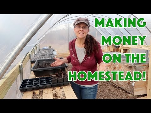 Turn $12 into $120!  Making Money on the Homestead!