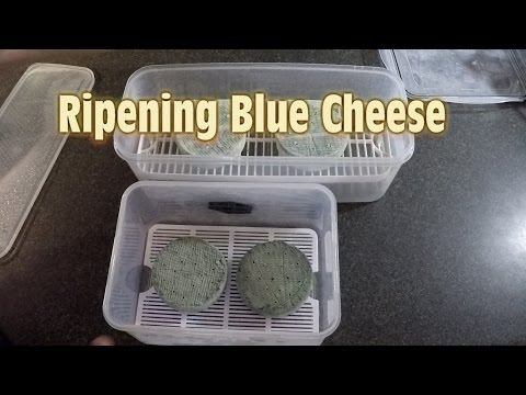 How to Ripen Blue Cheese
