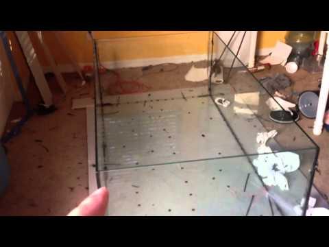 Tank build update!!! DIY glass aquarium build